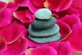 Zen stones on rose petals — ストック写真