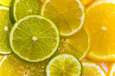 Slices of the orange, the lime and the lemon — Stock Photo