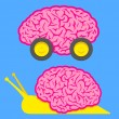 Stock Vector: Fast brain on wheels and slow snail brain