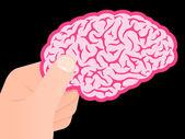 Мозг человеческой рукой Показываю розовый — Cтоковый вектор
