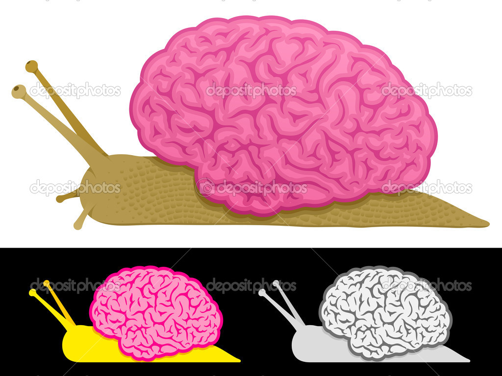 Slow thinking snail brain  Stock Vector #6426549