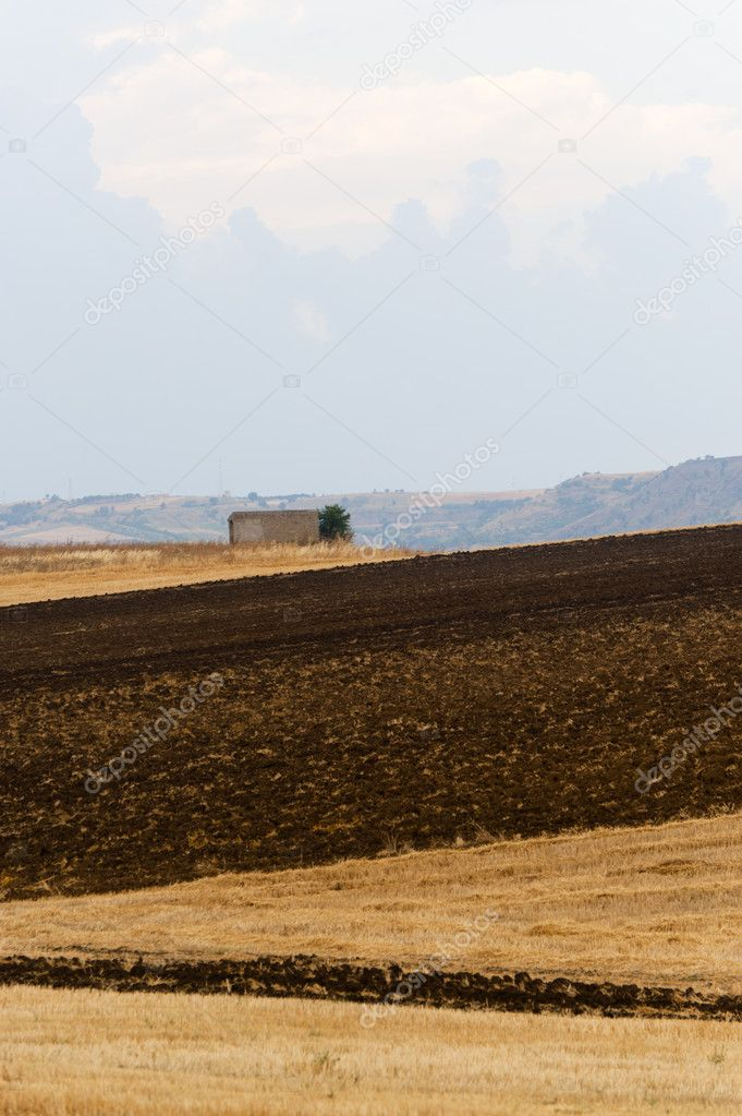 Between Puglia and Basilicata (Italy): Country landscape at summer — Stock Photo #6215901