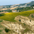 Stock Photo: Atri Natural Park (Teramo, Abruzzi, Italy), landscape at summer,