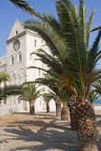 Trani (Puglia, Italy) - Medieval cathedral and palm trees — Stock Photo