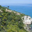 The coast of Gargano (Puglia, Italy) at summer — Stock Photo