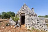 Murge (puglia, itália) - trullo e oliveiras — Fotografia Stock