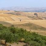 Landscape in Basilicata (Italy) near Melfi at summer — Stock Photo