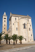 Trani (Puglia, Italy) - Medieval cathedral and palm trees — 图库照片