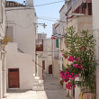 Peschici (Gargano, Puglia, Italy) a street of the old village — Stock Photo #6334550