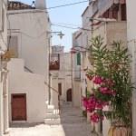 Peschici (Gargano, Puglia, Italy) a street of the old village — Stock Photo