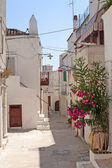 Peschici (Gargano, Puglia, Italy) a street of the old village — Stock Photo