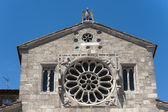 Lugnano in Teverina (Terni, Umbria, Italy): Old church, rose win — Стоковое фото