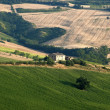 Stock Photo: Marches (Italy) - Landscape at summer, farm