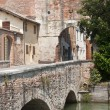 Castelfranco Veneto (Treviso, Veneto, Italy) - Ancient gate and — Stock Photo #6443505