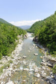 The Trebbia river at summer — Stock Photo