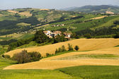 Landscape in the Oltrepo Pavese (Italy) — Stock Photo