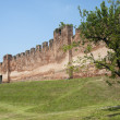 Castelfranco Veneto (Treviso, Veneto, Italy): Ancient walls and — Stock Photo #6471593