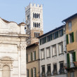 Royalty-Free Stock Photo: Lucca, historic buildings