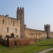 Montagnana (Padova, Veneto, italy) - Medieval walls — Stock Photo #6632525