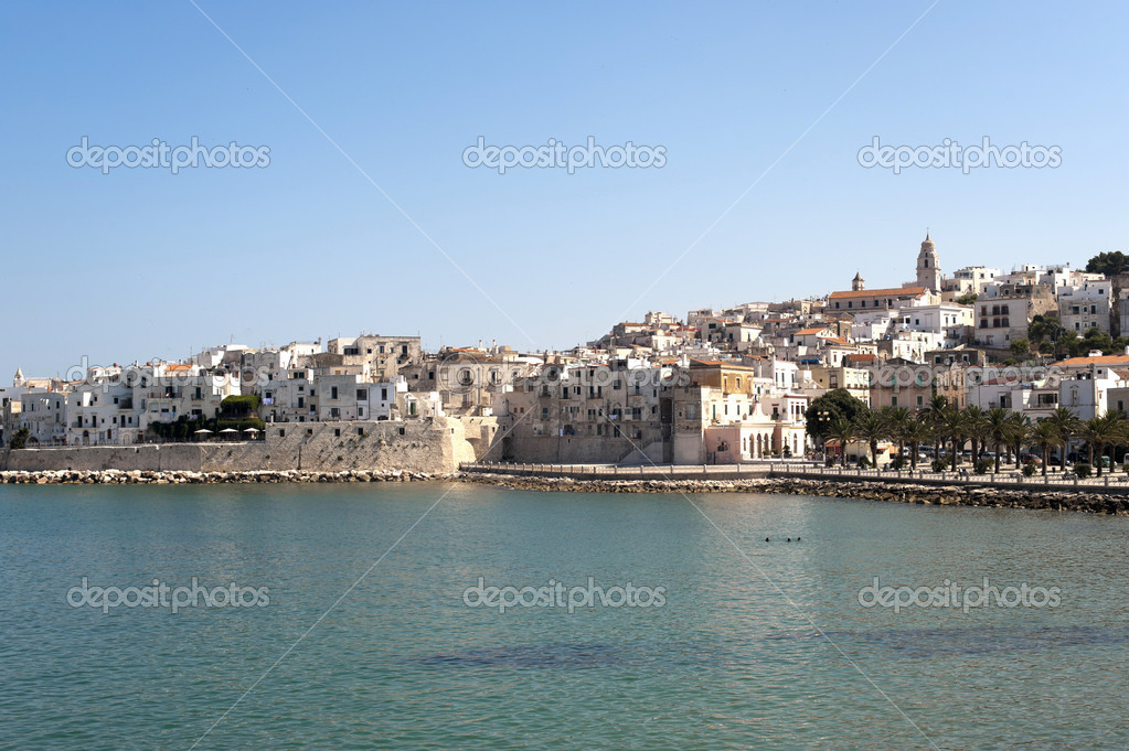 Foggia Italy  city photo : Vieste Foggia, Gargano, Puglia, Italy at summer — Stock Photo ...