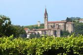 Lessinia (Verona, Veneto, italy), vineyards at summer and villa — Stock Photo
