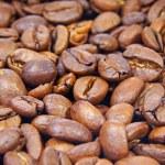 Kaffeebohne — Stock Photo #6200780