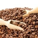 Kaffeebohne — Stock Photo