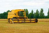Mähdrescher auf einem Getreidefeld — Stock Photo