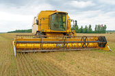 Landwirtschaft — Stock Photo