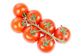 Tomate — Stock Photo