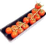 Tomato — Stock Photo #6433731