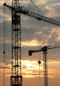 Construction Cranes — Stock Photo