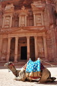 Petra,Jordan — Stock Photo