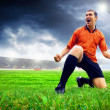 Stock Photo: Happiness football player after goal on field of stadium wit