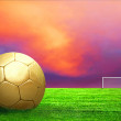 Soccer ball on green grass and sky background — Stock Photo #6352975