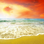 Young beautiful women on the sunny tropical beach in bikini — Stock Photo