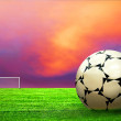Soccer ball on green grass and sky background — Stock Photo #6355106