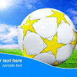 Ball on the field of stadium with blue sky and sample text — Stock Photo