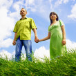 Happy on blue sky and green grass background — Stock Photo #6358413