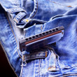 Harmonica on the jeans — Stock Photo