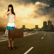 Young woman waiting on the road with her vintage baggage — Stock Photo #6359248