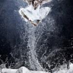 Jump of ballerina on the ice dancepool around splashes of water — Stock Photo #6359537