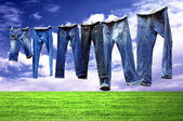 Jeans on a clothesline to dry — Stock Photo