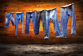 Jeans on a clothesline to dry on the grunge background — Stock Photo