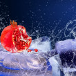 Water drops around red fruit on the ice — Stock Photo