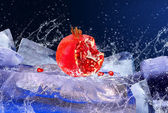 Water drops around red fruit on the ice — Стоковое фото