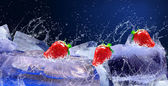 Water drops around strawberry and ice on blue background — Stock fotografie