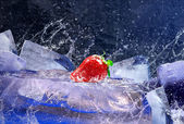 Water drops around strawberry and ice on blue background — Stockfoto