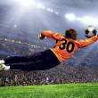 Football goalman on the stadium field — Stock Photo #6370740