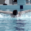 Stock Photo: Swimmer swimming in waterpool